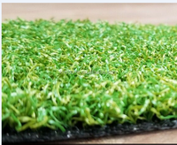 artificial synthetic outdoor putting green for golf club