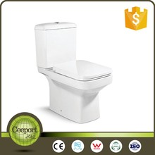 c-103 Chinese bathroom WC western automatic smart toilet commode