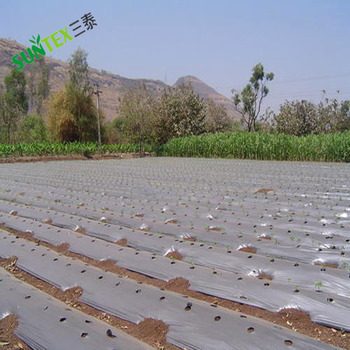 Garden Farming Agricultural Degradable Black Color Polyethylene Sheeting Weed Barrier Vegetable Ground Cover Plastic Mulch Film