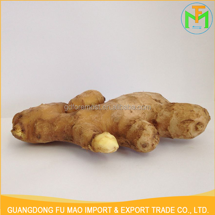 Best Price Per Ton Good Quality 250-300G Organic Growing Yellow Mature Chinese Ginger