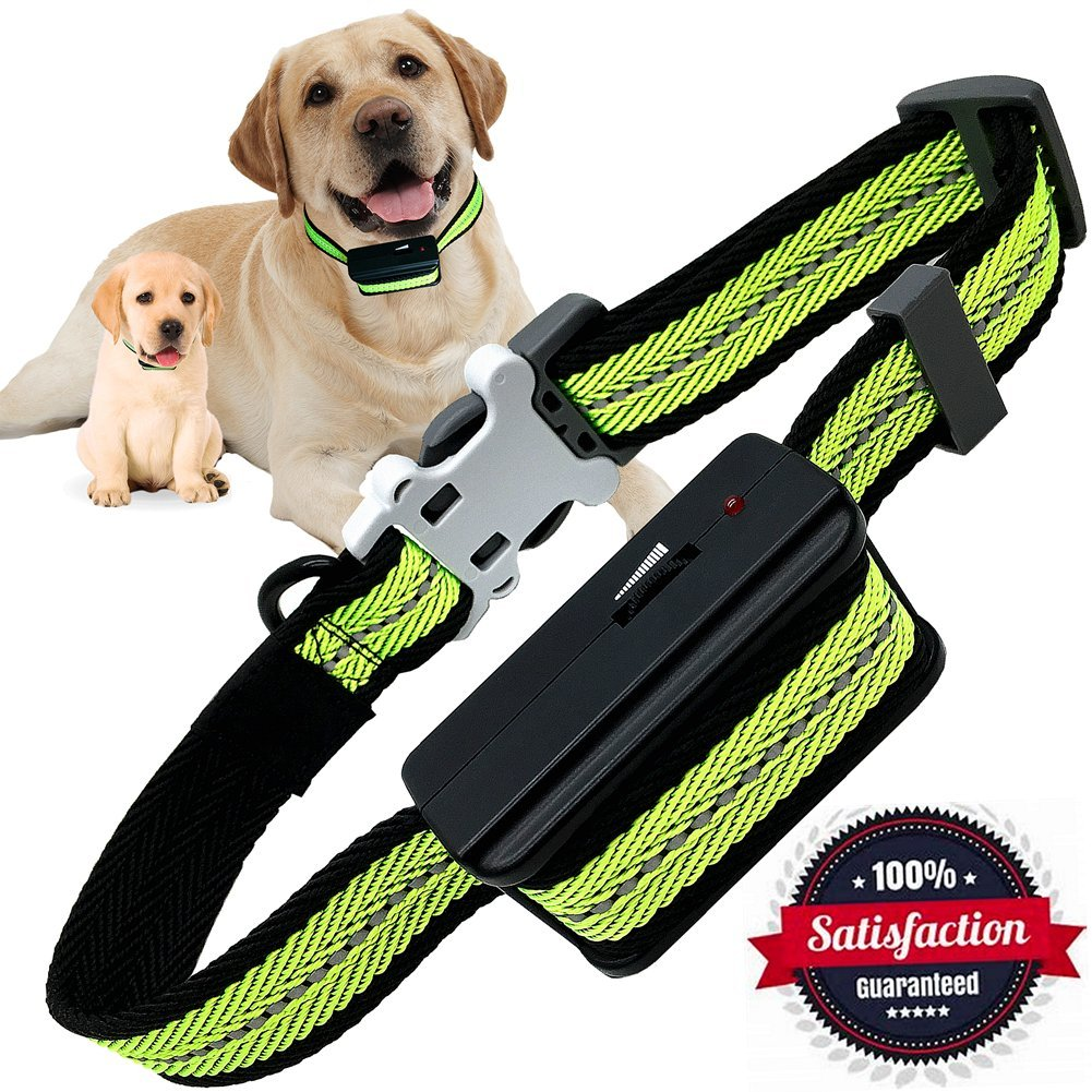 shock collars and dogs Types of devices pet containment systems the most common use of shock collars is pet containment systems that are used to keep a dog inside the perimeter of the.