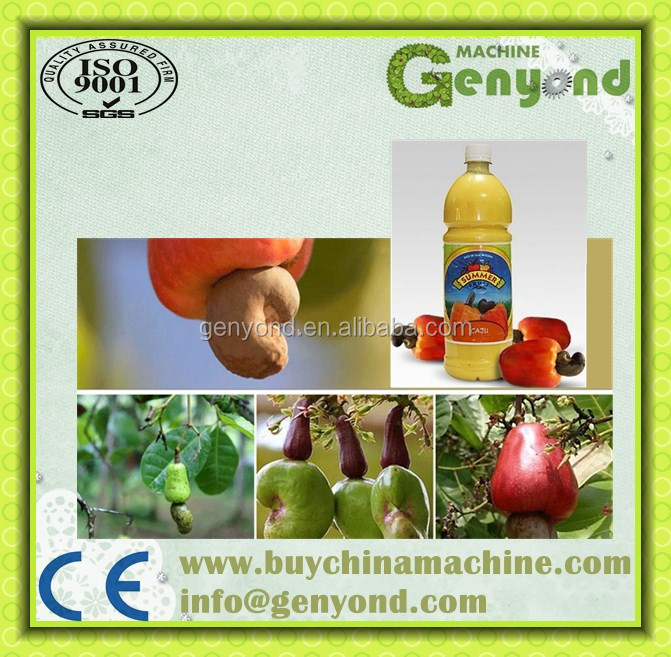 Whole Set Of Cashew Juice Concentrate Making Equipments / Cashew ...