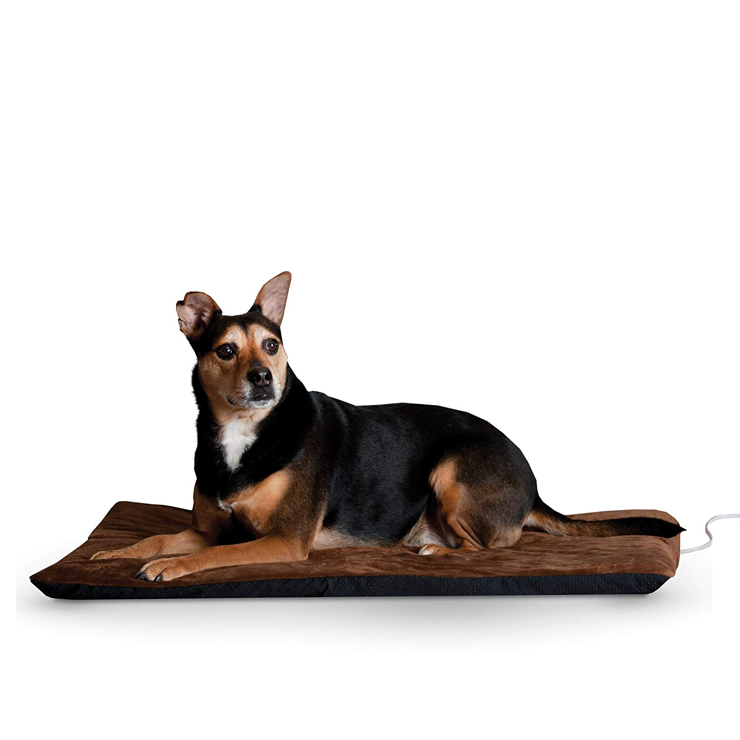 Picture of: Cheap Heated Dog Find Heated Dog Deals On Line At Alibaba Com