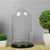 D15 x H26cm glass dome with flat wood base