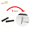 Hollyren Auto Easy Fan Smart Eyelash Extensions Volume New Wholesale Individual Eyelash Private Label 3D