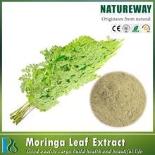 Pure Moringa Oleifera Leaf Extract Powder
