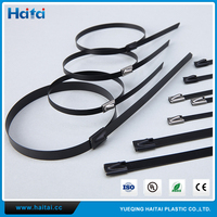 Haitai China Alibaba Stainless Steel Cable Ties - Ball Lock Type Stainless Steel Ties