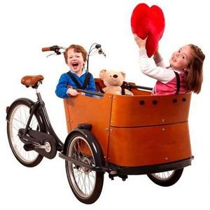 China Lowest Price Electric Cargo Tricycle/Three 3 Wheel Motorcycle Motorized Bike