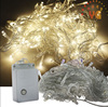 CE ROHS certificated non led christmas lights decorate outdoor led chasing christmas lights 110V/220V