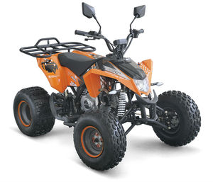 50CC ATV KIDS QUAD WITH EEC ENGINE FROM BULL