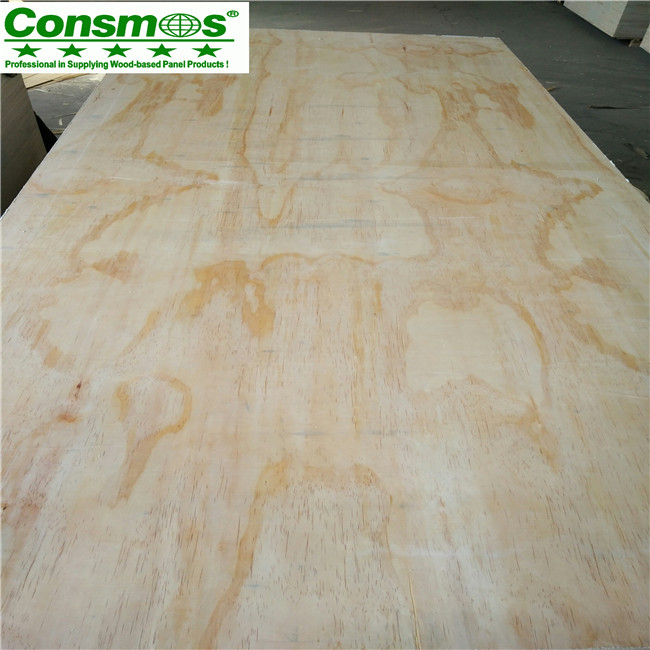 CDX radiate pine plywood for construction 18MM