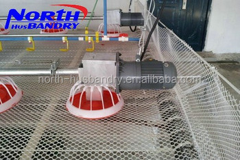 Best Price Automatic Chicken Feeders for Broiler in China
