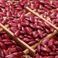Wholesale Dried Dark Red Kidney Bean for Canned Food