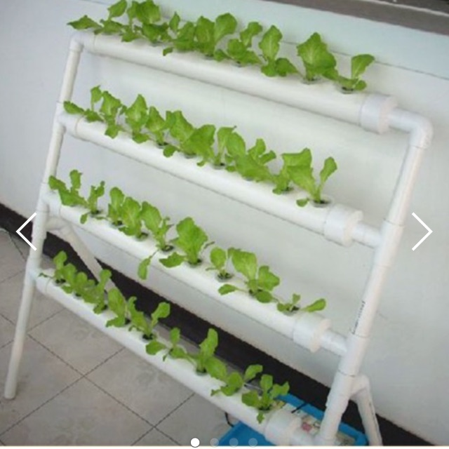 Indoor Small Size Hydroponic System Diy Hydroponic System Hydroponic Gardening Buy Indoor One Side Hydroponic System Diy Small Hydroponic