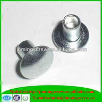 Stainless steel flat head rivets