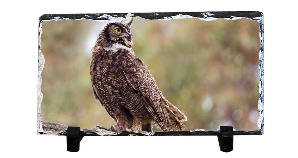 Y.H.X Personalized Picture Frames Photo Rock Slate Owl Photo Plaque Customized Photo Plaque