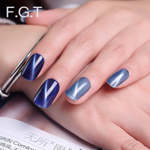 Gel Nail Polish Magnetic Soak Off Gel Lacquer with Top and Base Coat Cat Eye Nail Art with Magic Magnet Stick UV Gel
