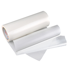 High Quality Copolyamide Hot Melt Adhesive Film Nylon Fabric Glue
