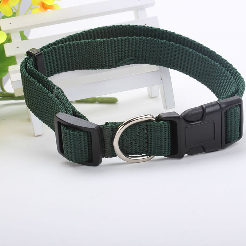 New arrival custom dog collar nylon strap top quality
