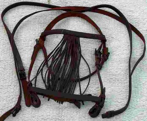 Leather Spanish Bridle