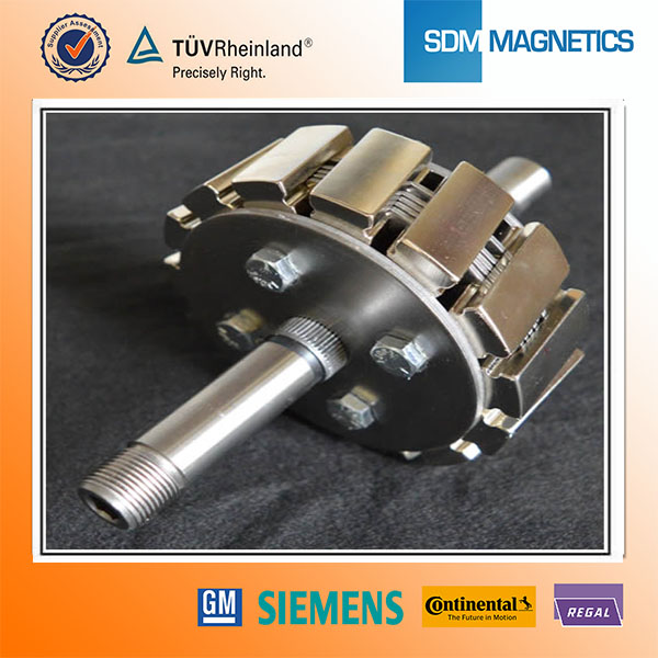 14 Years Experience Professional Magnetic Motor Parts