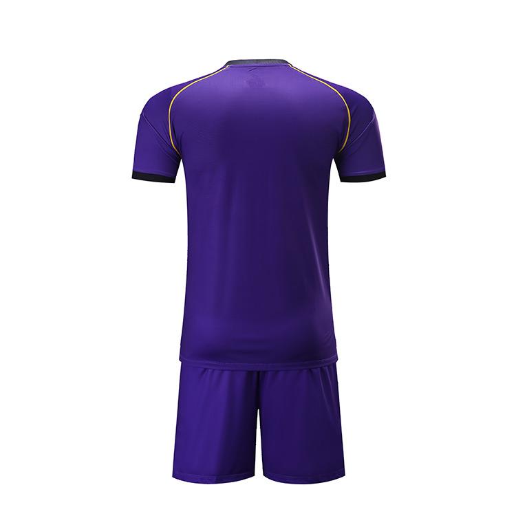เสื้อเจอร์ซี่สีม่วงสำหรับเล่นฟุตบอล,เสื้อเจอร์ซีย์กีฬาสำหรับผู้ชาย