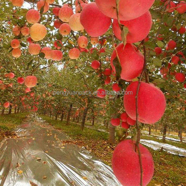 Heat reflective plastic agricultural mulch film
