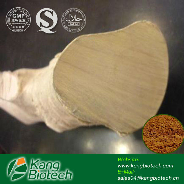 High quality natural penis erection medcine tongkat ali extract powder