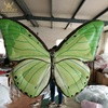 Giant decoration Inflatable Butterfly Life Cycle decoration for show inflatable yard decorations