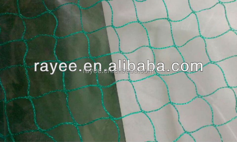 anti bird protection for pigeon or crow , 18.5*18.5 bird netting for medium size bird , PE red del pajaro agricola