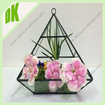 Diy Health Life Fresh Air Air Plant Glass Terrarium Glass