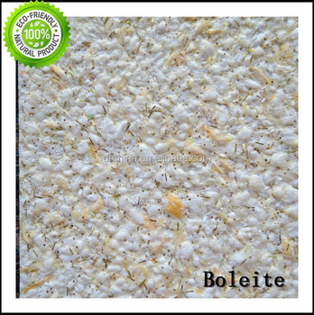 Exterior Textured Wall Coating For Villa,Apartment And Hotel Wall ...