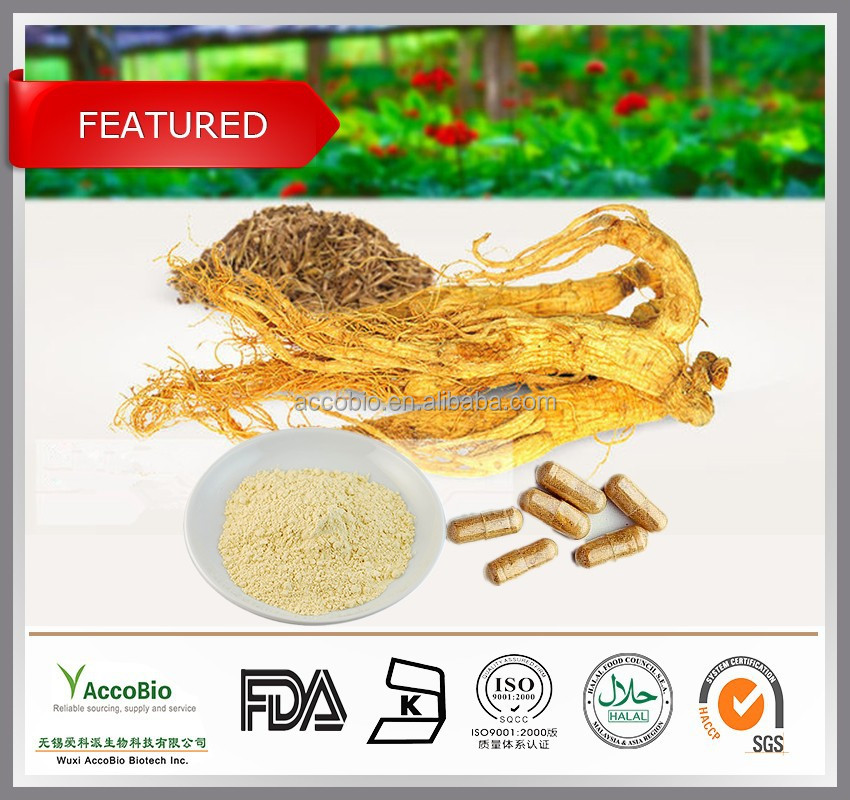 Natural Panax Ginseng root extract Wholesale, Pure 20%-80% Ginsenosides Red ginseng extract