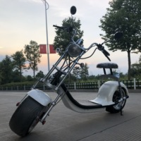 Europe warehouse,two wheel self-balancing electric scooter