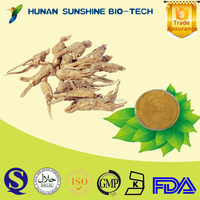 ISO22000 factory supply herb dong kuai extract with Kosher, Halal, FDA registered dong kuai extract powder