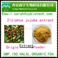 bulk sale Ziziphus jujuba extract / jujube powder