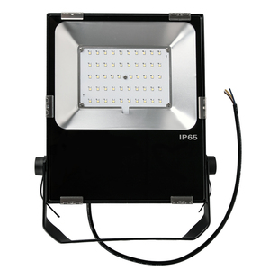 Boat marine CE ETL DLC 12v 50w led flood light