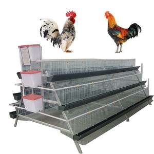 gamefowl dome pen chicken cage for sale