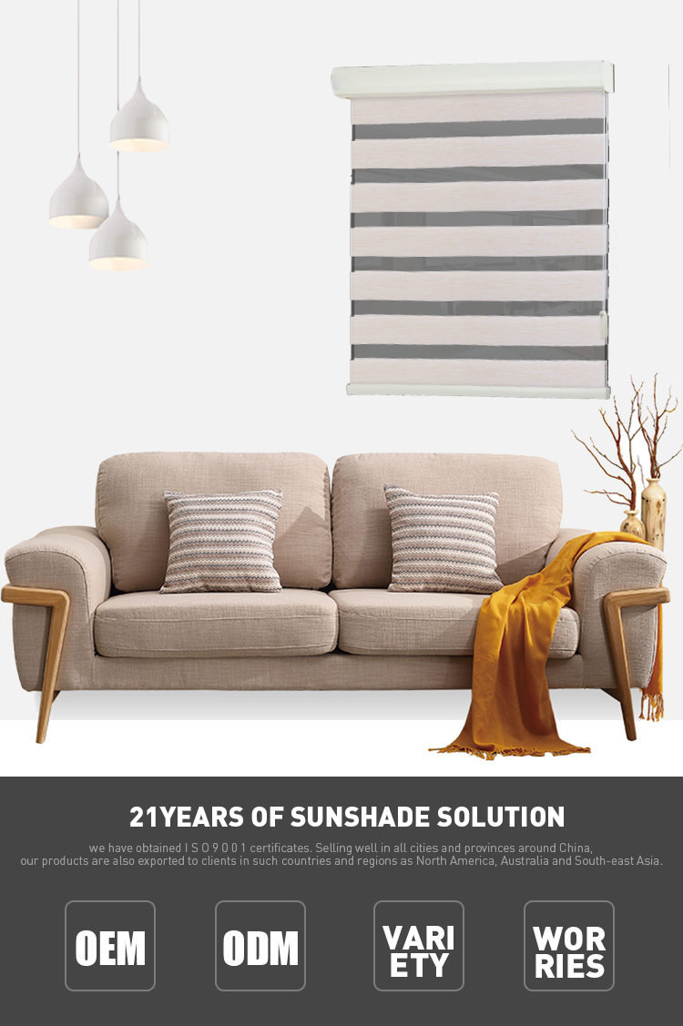 China Fashion Double Layers Full Light Shading Rainbow Colored Roller Blinds/Zebra Blinds