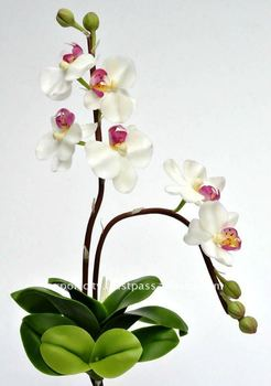 "Phalaenopsis Orchid 8"" Artificial Flowers Thai Clay Handmade"
