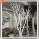 high quality artificial white dry tree branch coral artificial tree no leaves