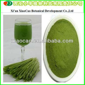Global Supplier Of Barley Grass Powder Barley Grass Juice