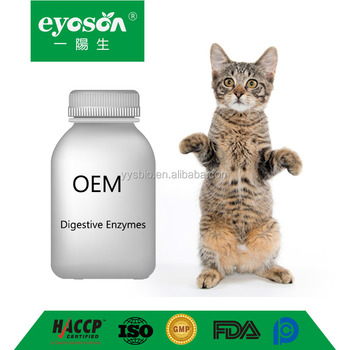 Oem Cat Digestive Enzymes For Pet Hospital Custom Formulation For Animal  Veterinarian Guarantee Natural Supplement Advanced - Buy Systemic Digestive