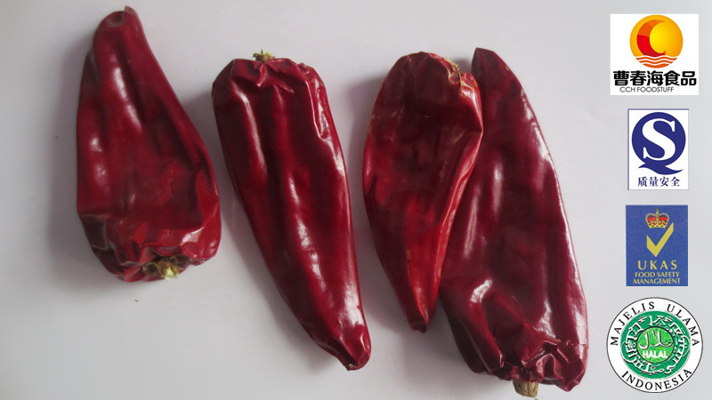 China laoganma supplier best price chilli manufacture yidu chilli with haccp halal certificate