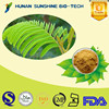 100% Natural Mimosa Pudica Extract Powder,Sensitive Plant Herb Extract
