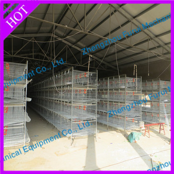 poultry house design for layers in kenya farm buy