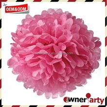 Hot Sale High Quality Various Color Cheer Leader Pom Poms