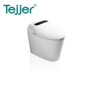 Zhejiang Tejieer Intelligent Sanitary Ware Co Ltd Smart