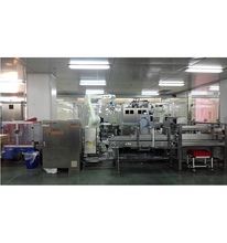 High speed automatic pouch flexible palletizing packaging system