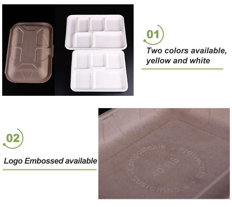 Compostable Square 5-Compartment Plates Bagasse Tableware